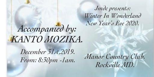 Winter In Wonderland- New Year's Eve 2020