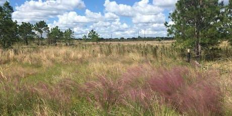 Invasive Plant Field Workshop: Homeland Native Grass Restoration tickets