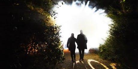 Ickworth's Light Nights 25th November - 1st December tickets