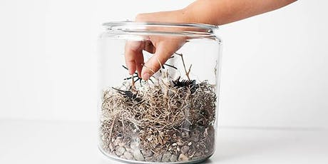 Beer and Spooky Terrariums tickets