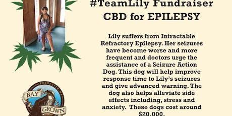 CBD for Epilepsy tickets