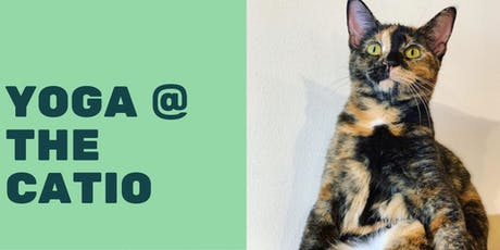 Yoga at The Catio tickets