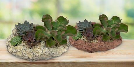 Succulent Planter Workshop tickets