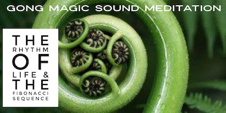 Gong Magic Meditation with the Fibonacci Tuning Pipes tickets