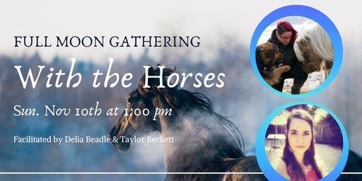 Full Moon Gathering with Horses