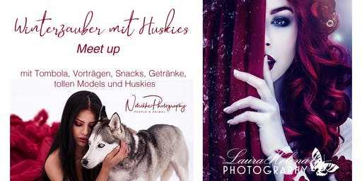 Winterzauber mit Huskies