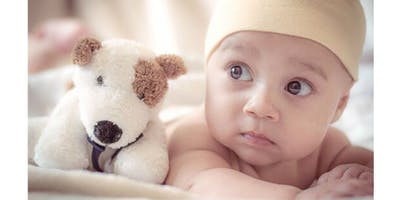 Lunch & Learn: Car Seats & Newborn Care