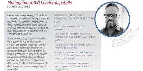Management 3.0 Leadership Agile - Drummondville billets