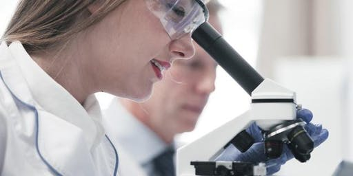 Gender Equality in Science: Why Is It Taking so Long?