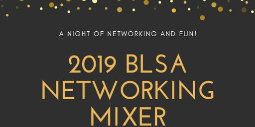 2019 BLSA Networking Mixer