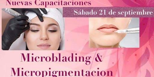 Microblading & Micropigmentación: Nivel Inicial