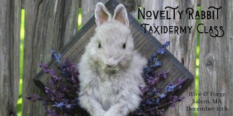 Novelty Rabbit Taxidermy Workshop tickets