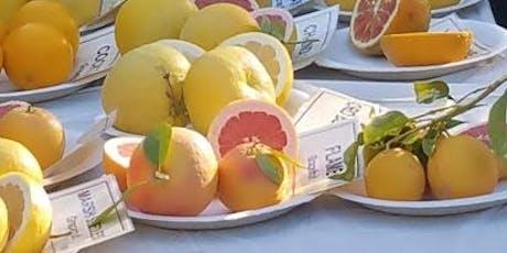 Maricopa County Master Gardener Citrus Clinic- West Valley 2020 tickets