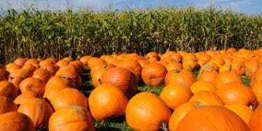 Fall Family Event at Hurricane Hill