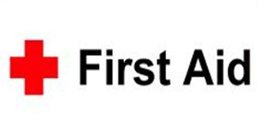Public First Aid Training