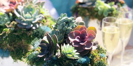 Pumpkin Succulents | L'Auberge Del Mar tickets