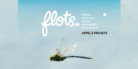 Journée d'information et d'échanges sur l'appel à projets FLOTS billets