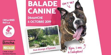Balade Canine à Épinois (Binche) billets