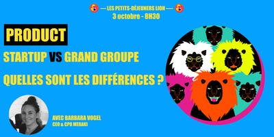 Product+en+startup+VS+en+grand+groupe+%3A+Quell