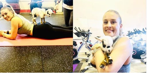 Naaamaste: Goat Yoga Experience (6:30 PM)