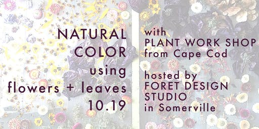 WORKSHOP: natural dyeing with flowers + leaves