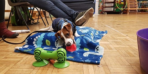 Puppy Life Skills. Merryoak 7.15pm