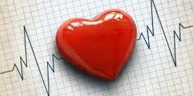Congenital Heart Disease Multi-disciplinary Educational Day