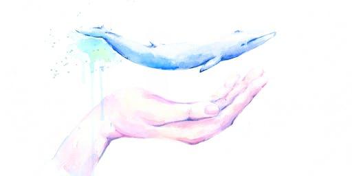 I cetacei: una vita fatta di suoni. LABORATORIO