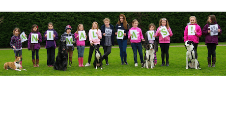Cheltenham Animal Shelter Expereince Day - Dog Session (Morning) tickets