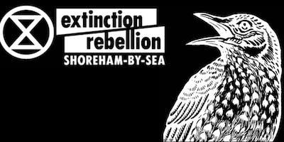 Extinction Rebellion Shoreham-by-Sea -  Press and Social Media Training