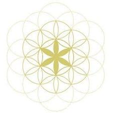 Espaço Luz® logo