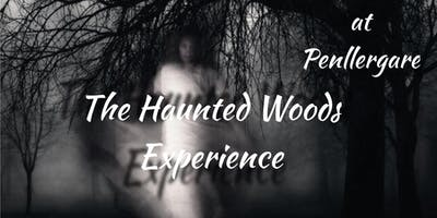 The Haunted Woods Experience - Ghost Hunt + Ghost Walk ( Swansea)