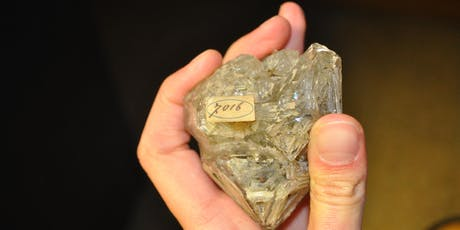 200 anni di storie dal Museo di Mineralogia biglietti