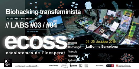 'ECOSS' 2019: Laboratori d'Ecologies queer: gènere, sexualitat i entorn. entradas