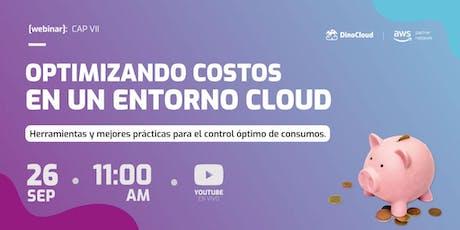 Optimizando costos en un entorno cloud entradas