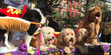 Dog Friendly Halloween Party tickets