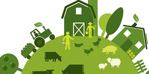 Just for you! Agricultural Value Chain Development & Market Linkages course