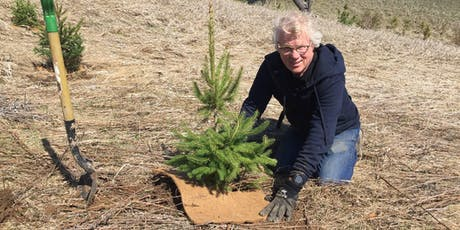 Orangeville Community Tree Planting tickets