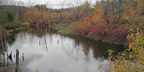 Family Nature Day - Petun Conservation Area and Fish Hatchery Tour- April 16, 2020 tickets
