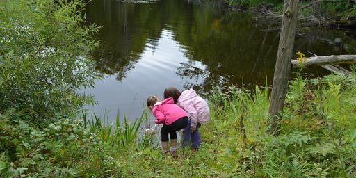 Family Nature Day - Life in the Pond (age 4-11) and High School Ecosystem Study (age 12-19) - June 5, 2020