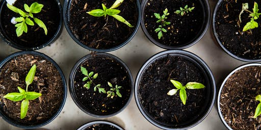Linn County Master Gardeners Series