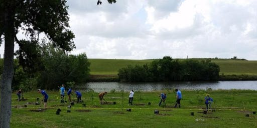 Milby Park  Friday Tree Planting Event
