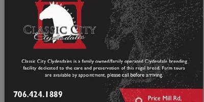 Classic City Clydesdales Farm Tour