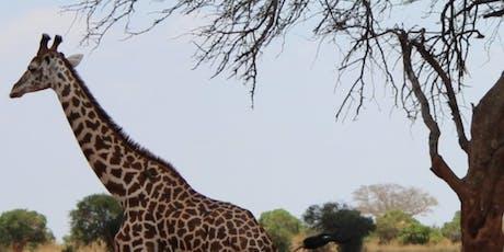 Safari in Roseburg Square tickets