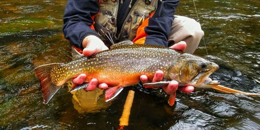 CT DEEP Fisheries Division Trout and Salmon Forum Oct. 7 @ Sessions Woods