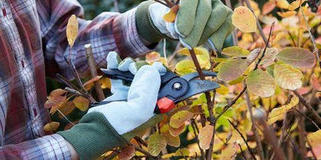 Fall Pruning Class tickets