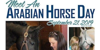 Meet an Arabian Horse Day