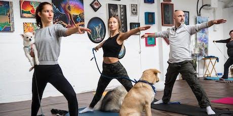 NÜLOVE - Free Yoga in Trillium Park - Zen Dogs Wellness tickets