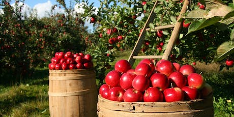 U-Pick Apple Field Trip! Chileno Valley Ranch Farm tickets