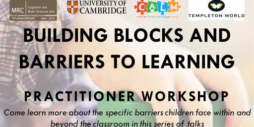 Building Blocks and Barriers to Learning - Limerick